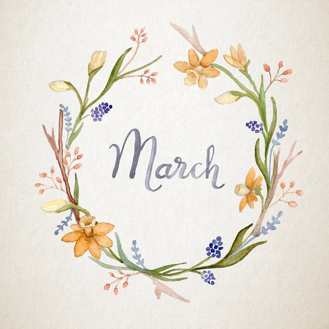 Watercolor floral wreath collection