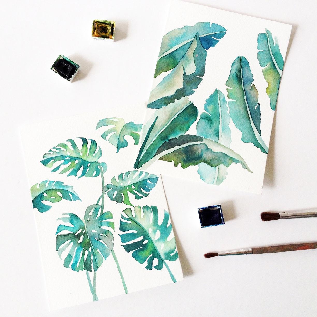 Watercolor florals - tropical plants