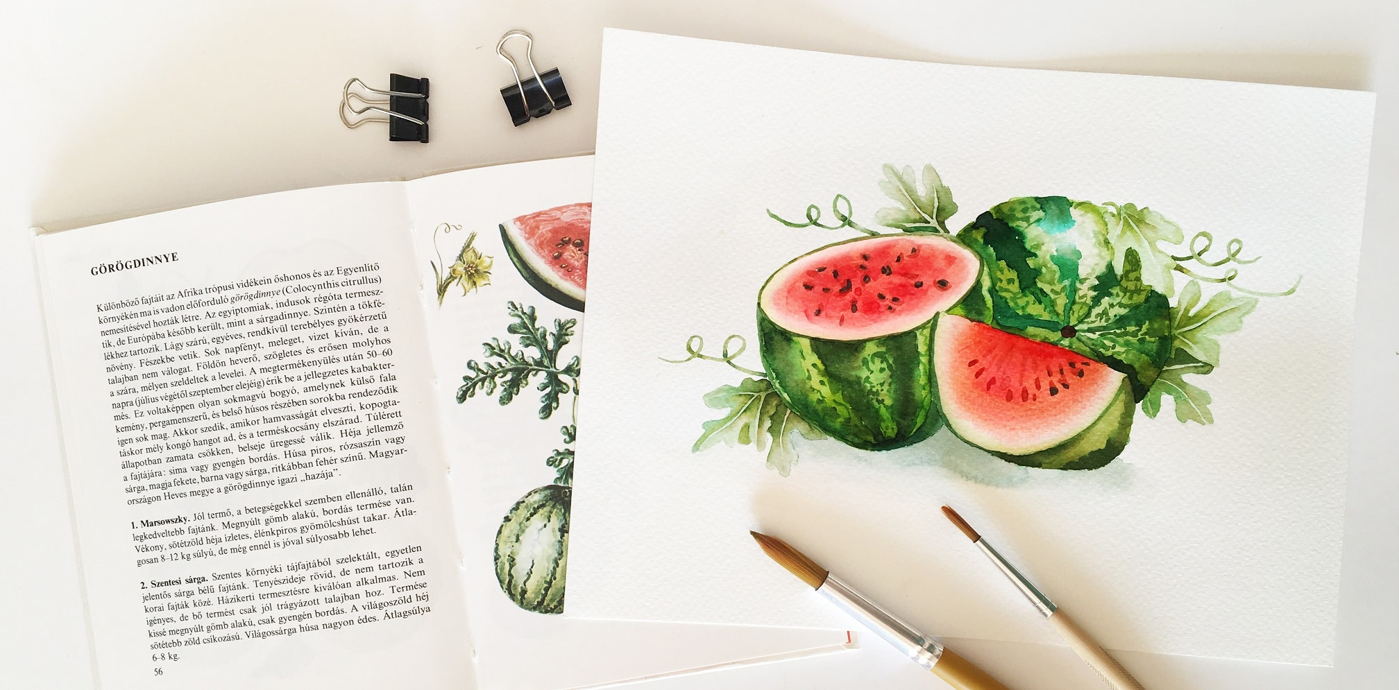 Watercolor Veggies - watermelon