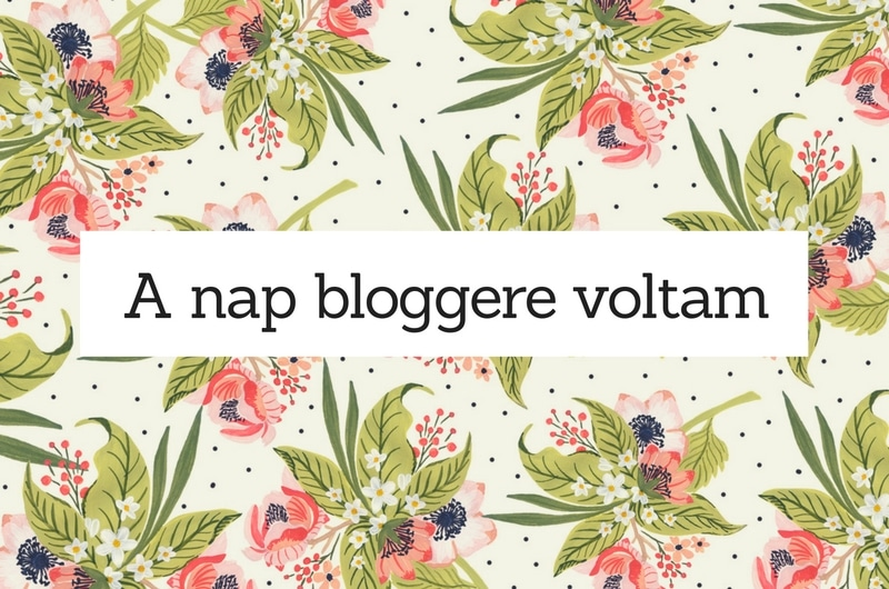 nap_bloggere_blog