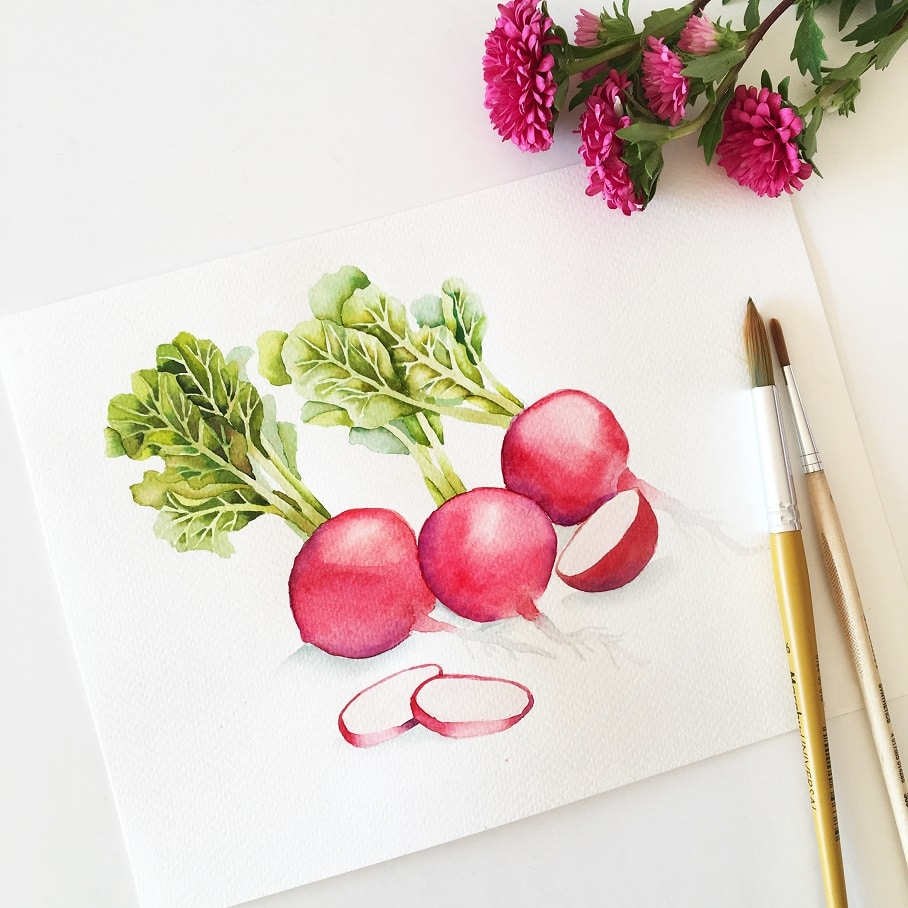 Watercolor Veggies - radishes