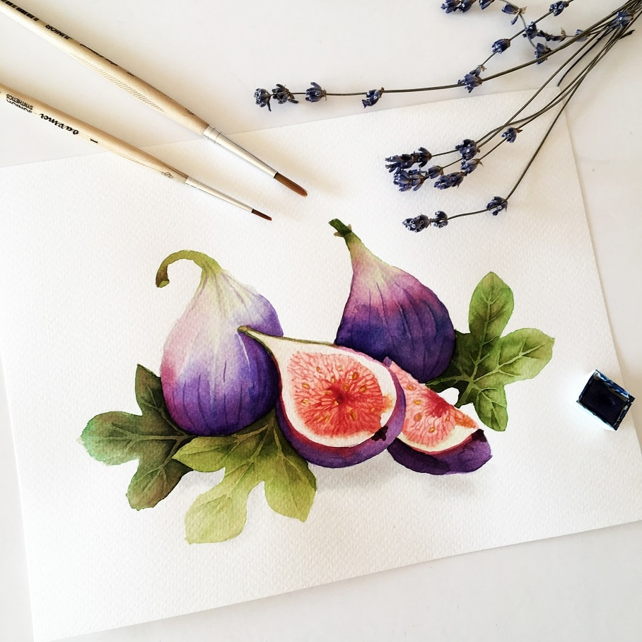 Watercolor Veggies - fig